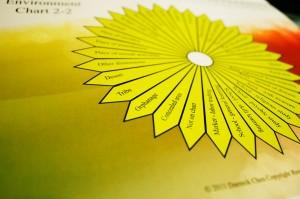 pendulum-charts 8343922785 o